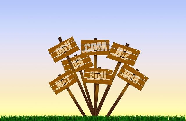 comprobar y contratar los nuevos dominios de internet